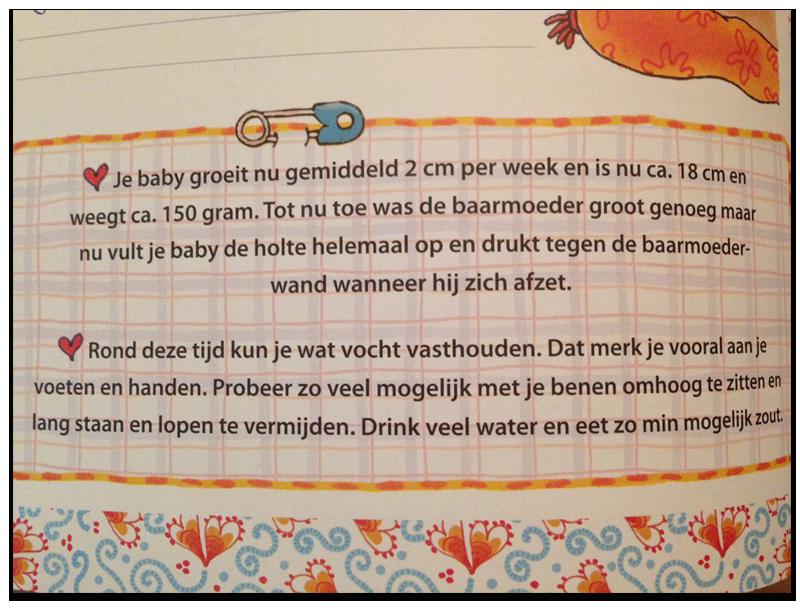 zwangerschapdagboek Pauline Oud