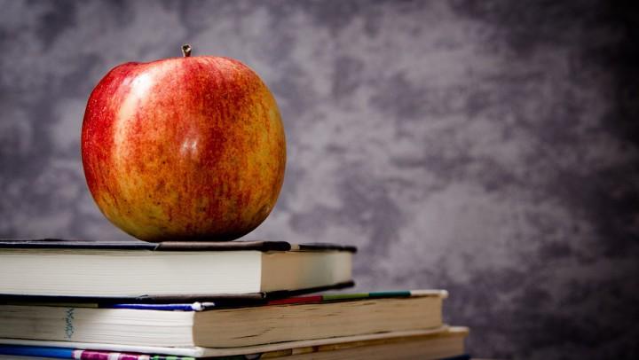 De juiste basisschool kiezen